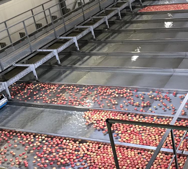 Es gibt nicht nur Aprikosen im Wallis